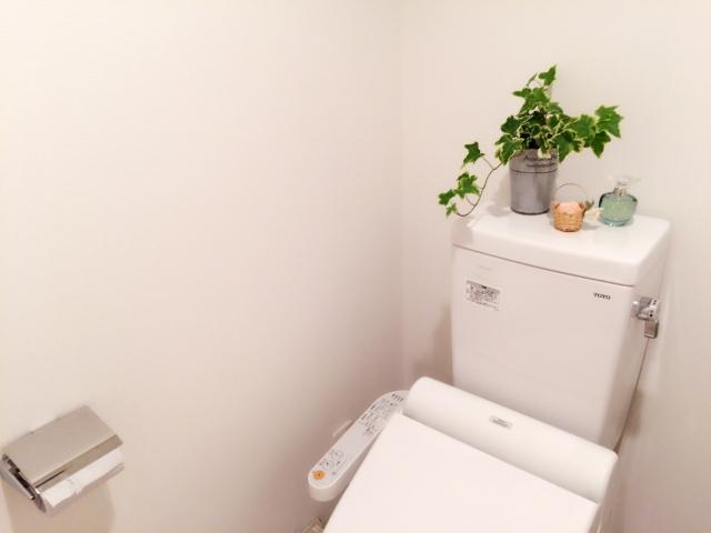 お好みのもので簡単にトイレの消臭剤を手作りで!作り方大公開!